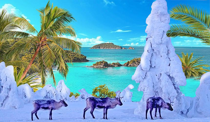 Новый год на пляже или среди сказочных сугробов?