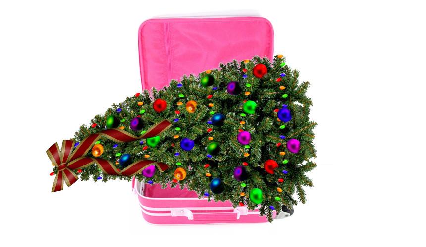 Куда еще реально купить туры на новогодние праздники