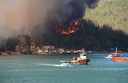 Туроператор сообщил из Турции, какие отели эвакуируют гостей