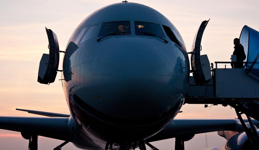 Рейс изАнталии в столицу России задержали, так как всамолет угодила птица