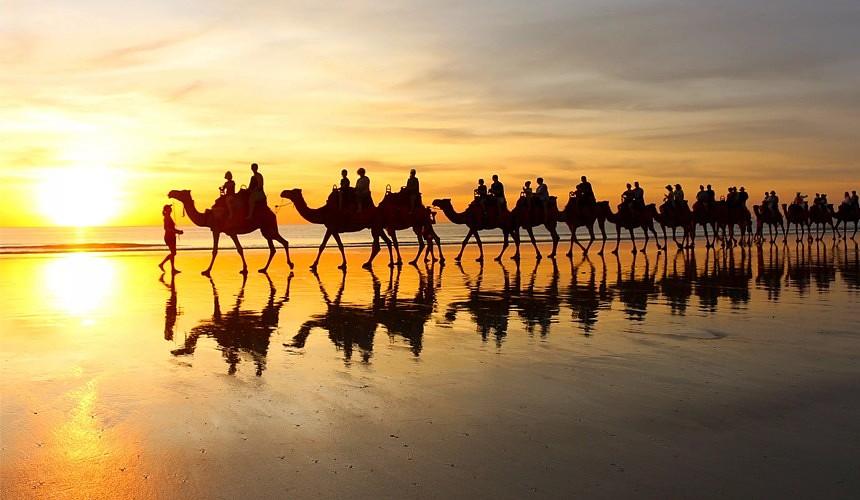Организованным туристам не нужно сдавать тест на коронавирус при въезде в Тунис
