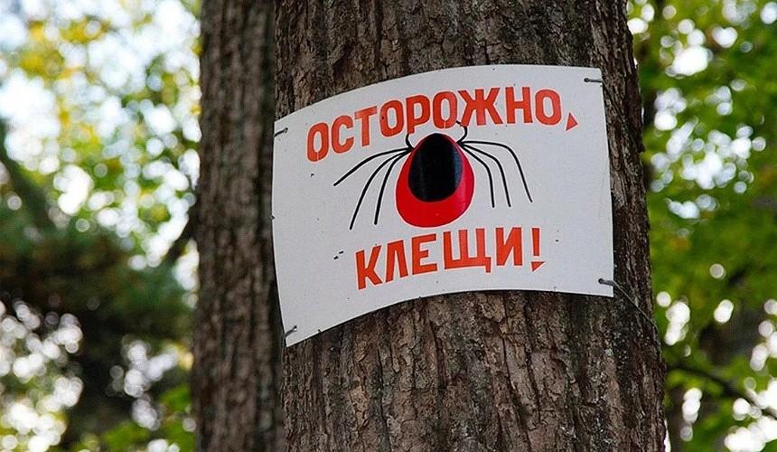 Эксперт рекомендует турагентам снабдить туристов памяткой перед поездкой на Алтай
