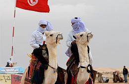 Туроператоры нарастили полётные программы в Тунис