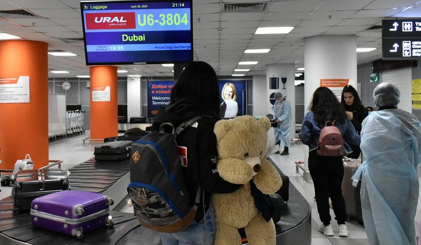 Авиакомпании отреагировали на запрет Росавиации продавать билеты в составе туров на грузопассажирских рейсах